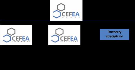 Schemat organizacji Cefea